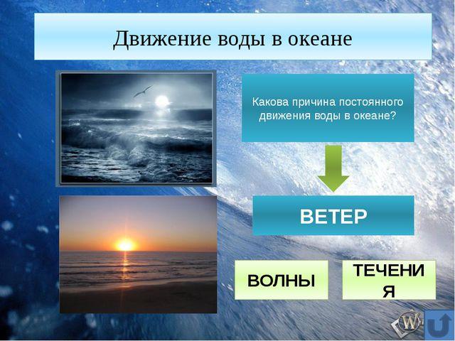 Движение воды в океане Какова причина постоянного движения воды в океане? ВЕТ...