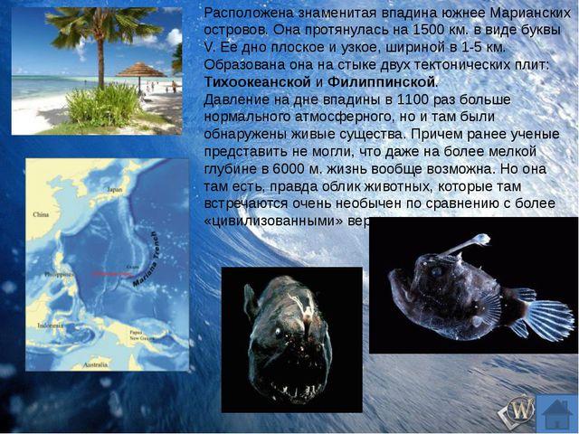 Почему океаническую воду нельзя пить? Почему нельзя искупаться в Северном Лед...