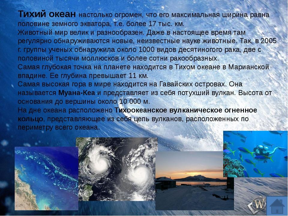 Тихий океан настолько огромен, что его максимальная ширина равна половине зе...