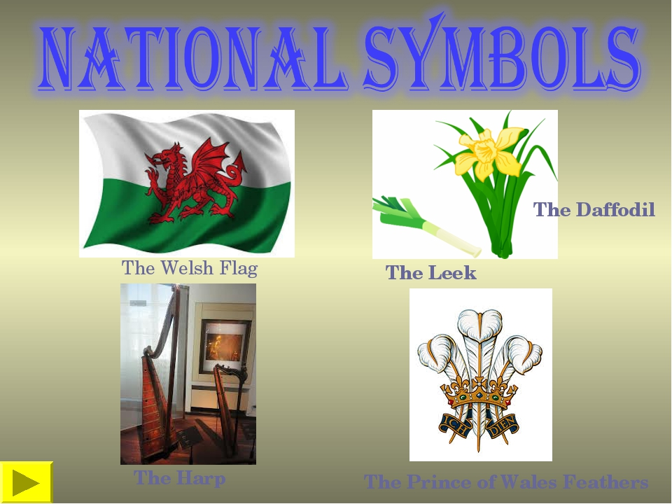 The Welsh Flag The Harp The Daffodil The Leek The Prince of Wales Feathers
