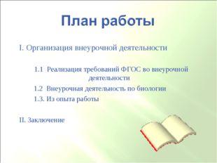 I. Организация внеурочной деятельности 1.1 Реализация требований ФГОС во внеу