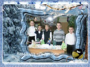 Команда «Льдинки»