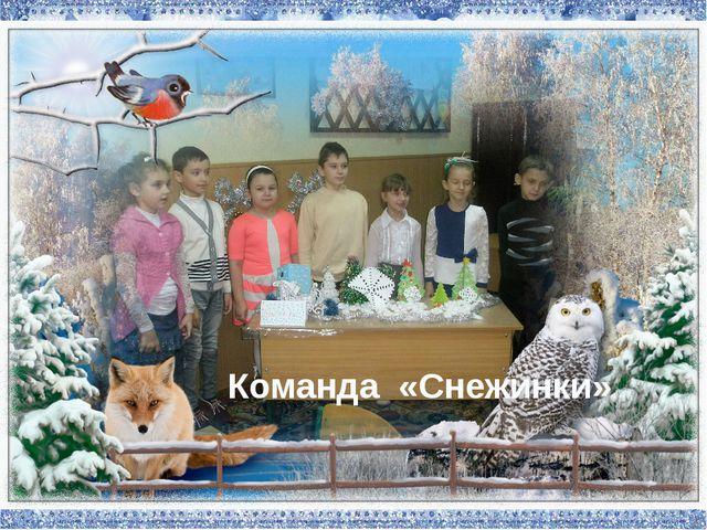Команда «Снежинки»