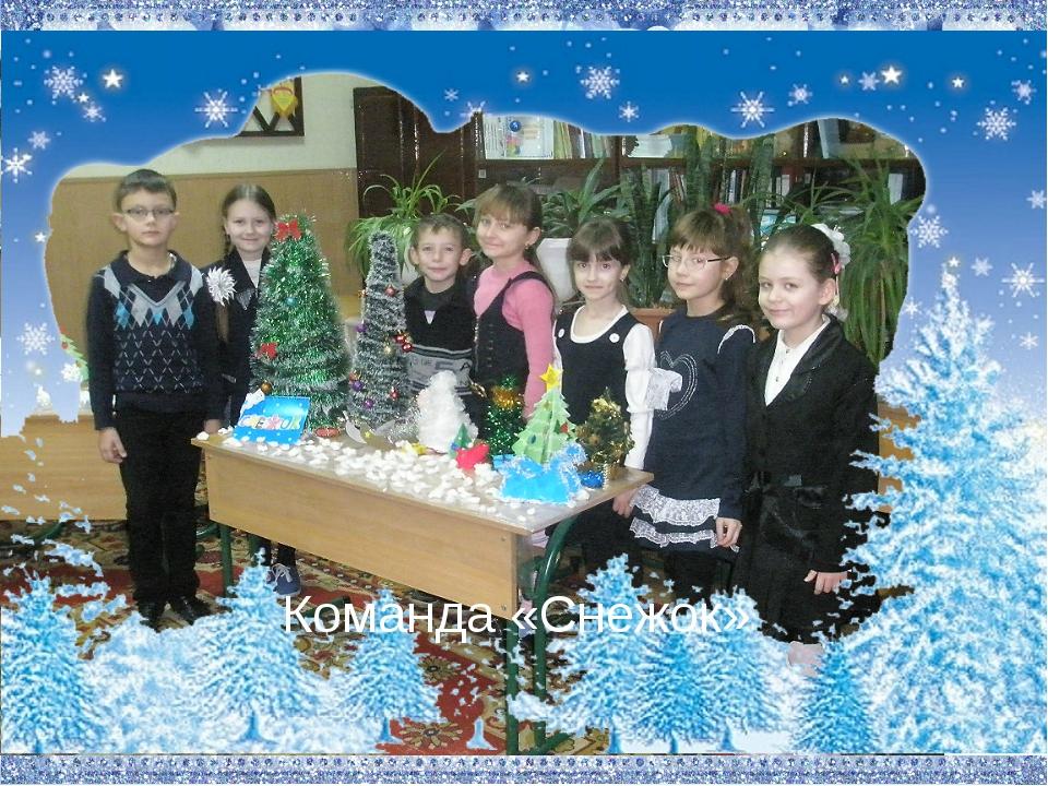 Команда «Снежок»