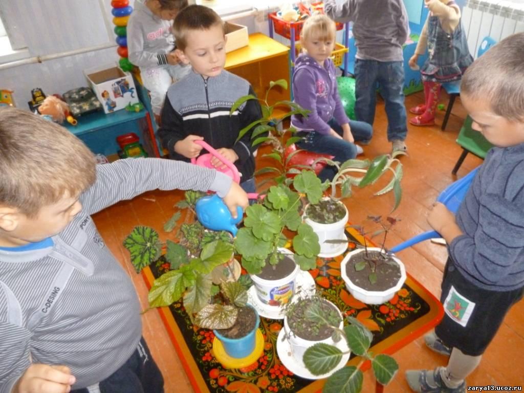 Фото дети поливают цветы в детском саду