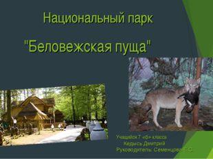 """Национальный парк """"Беловежская пуща"""" Учащийся 7 «б» класса Кедысь Дмитрий Рук"""