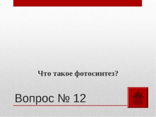 Вопрос № 12 Что такое фотосинтез?