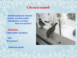 Сделали вывод: Зимой птицам не хватает корма, человек может поддержать в холо