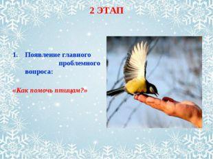 2 ЭТАП Появление главного проблемного вопроса: «Как помочь птицам?»