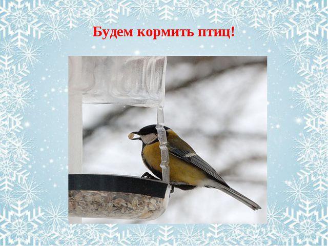Будем кормить птиц!