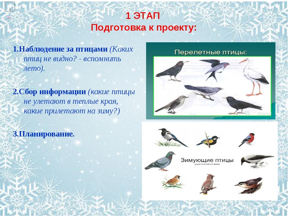 1 ЭТАП Подготовка к проекту: 1.Наблюдение за птицами (Каких птиц не видно? -...