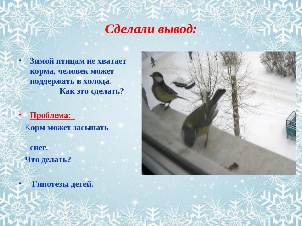 Сделали вывод: Зимой птицам не хватает корма, человек может поддержать в холо...
