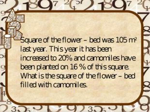 Square of the flower – bed was 105 m2 last year. This year it has been increa