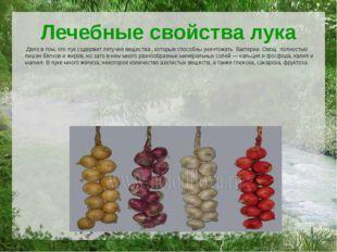 Лечебные свойства лука Дело в том, что лук содержит летучие вещества , которы