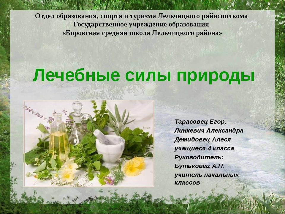 Лечебные силы природы Тарасовец Егор, Линкевич Александра Демидовец Алеся уча...