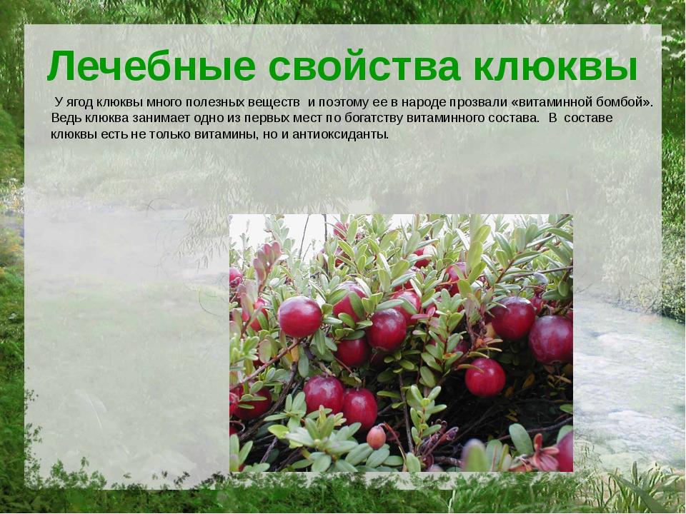 Лечебные свойства клюквы У ягод клюквы много полезных веществ и поэтому ее в...