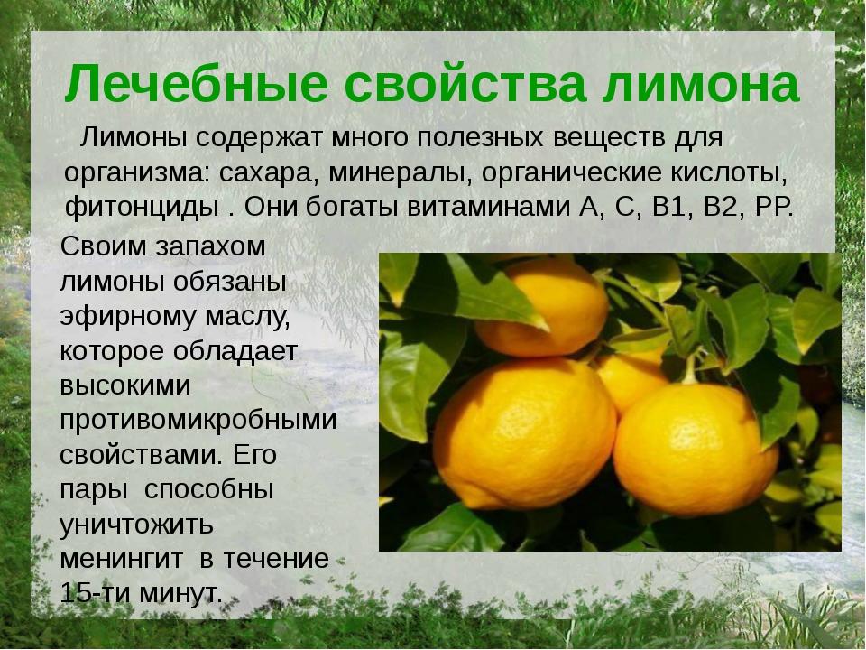 Лечебные свойства лимона Лимоны содержат много полезных веществ для организма...