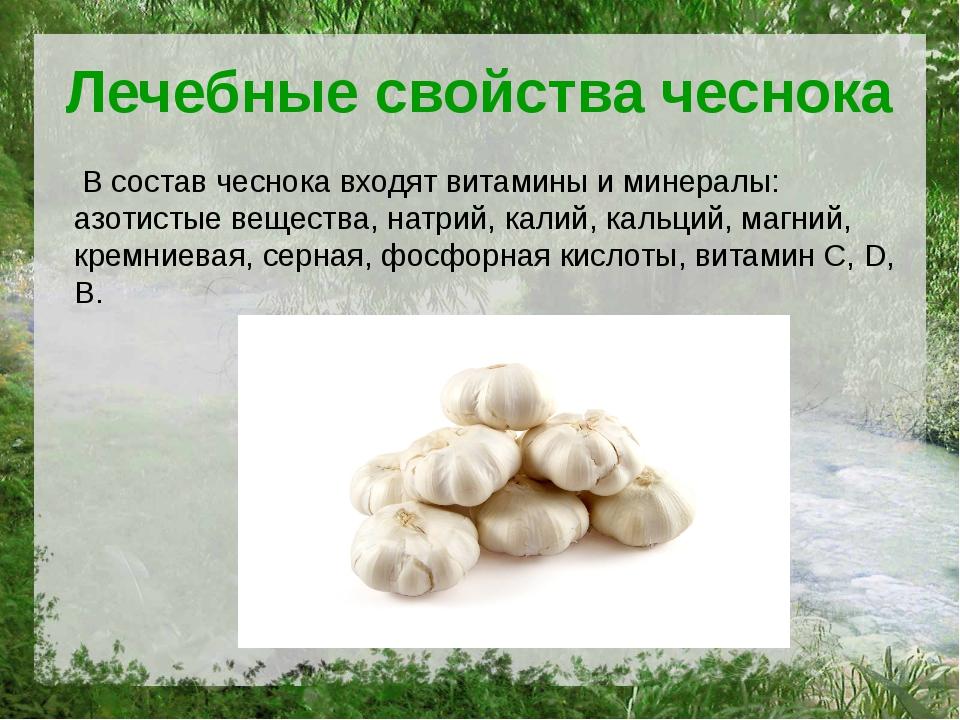 Лечебные свойства чеснока В состав чеснока входят витамины и минералы: азотис...