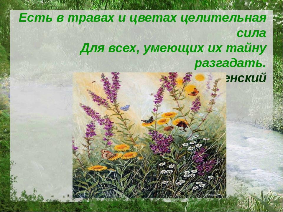 Есть в травах и цветах целительная сила Для всех, умеющих их тайну разгадать....