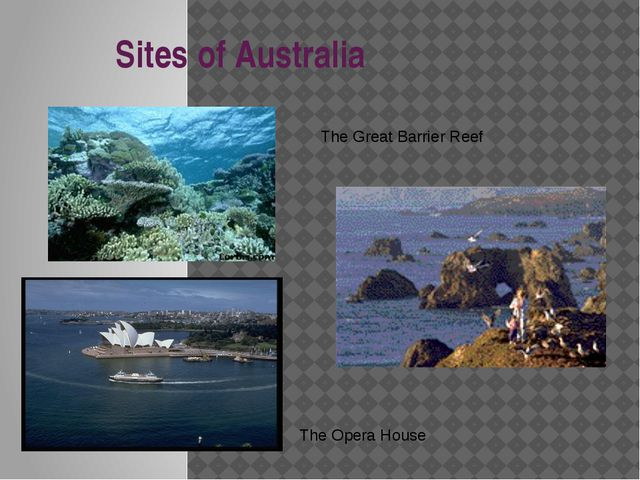 Sites of Australia The Great Barrier Reef The Opera House