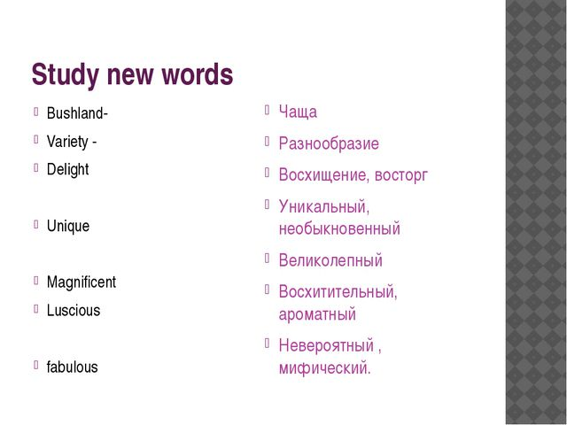 Study new words Bushland- Variety - Delight Unique Magnificent Luscious fabul...