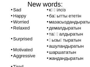 New words: Sad Happy 	 Worried Relaxed 	 Surprised 	 Motivated 	 Aggressive