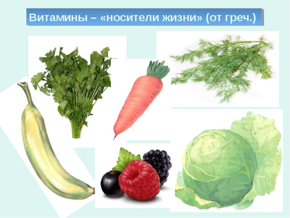 Витамины – «носители жизни» (от греч.)