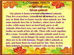 About animals Our planet is home to a vast collection of animals. They live