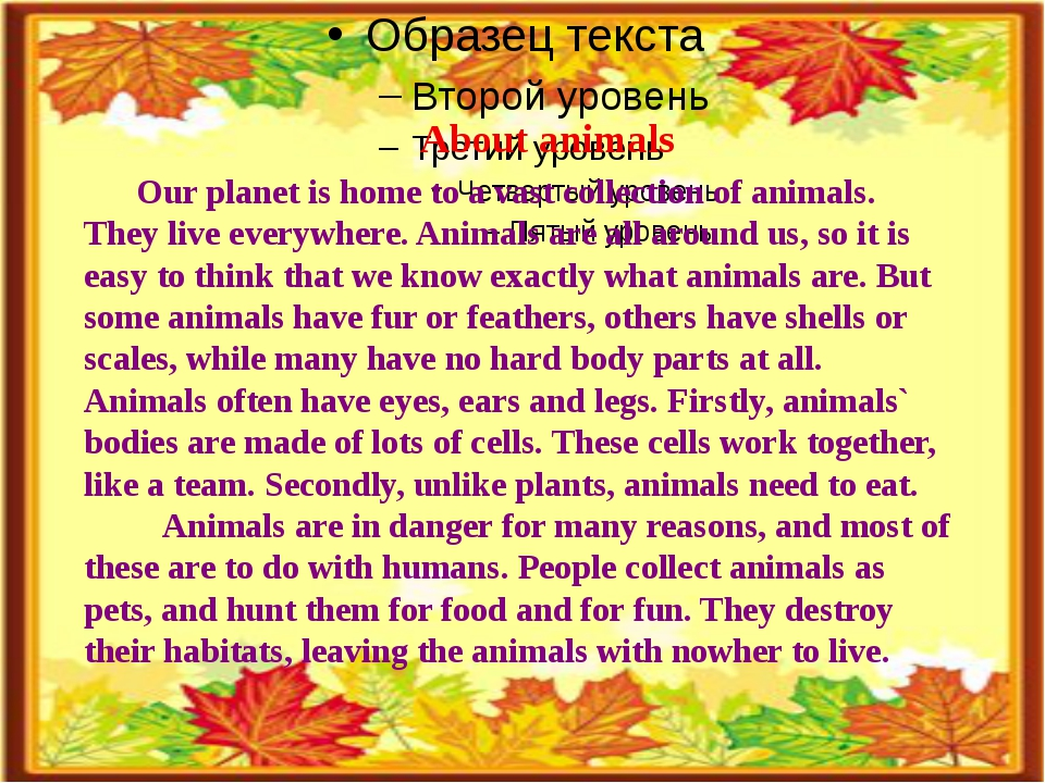 About animals Our planet is home to a vast collection of animals. They live...