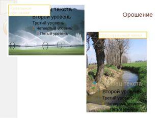 Орошение Оросительный канал Капельное орошение
