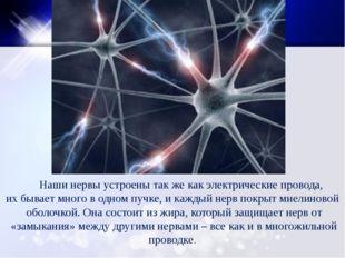 Наши нервы устроены так же как электрические провода, их бывает много в одно
