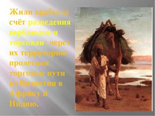 Жили арабы за счёт разведения верблюдов и торговли: через их территорию проле