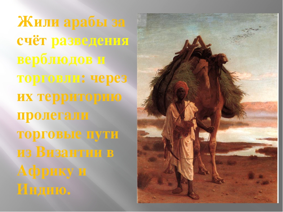 Жили арабы за счёт разведения верблюдов и торговли: через их территорию проле...