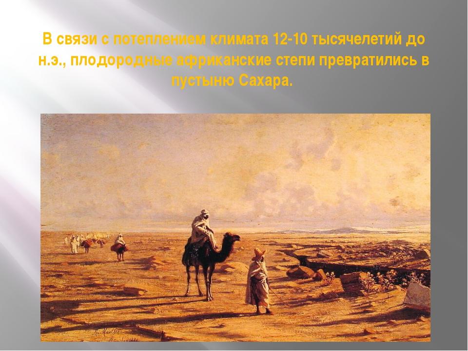 В связи с потеплением климата 12-10 тысячелетий до н.э., плодородные африканс...