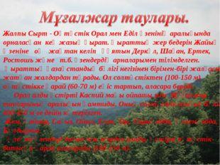 Жалпы Сырт - Оңтүстік Орал мен Еділ өзенінің аралығында орналасқан кең жазық