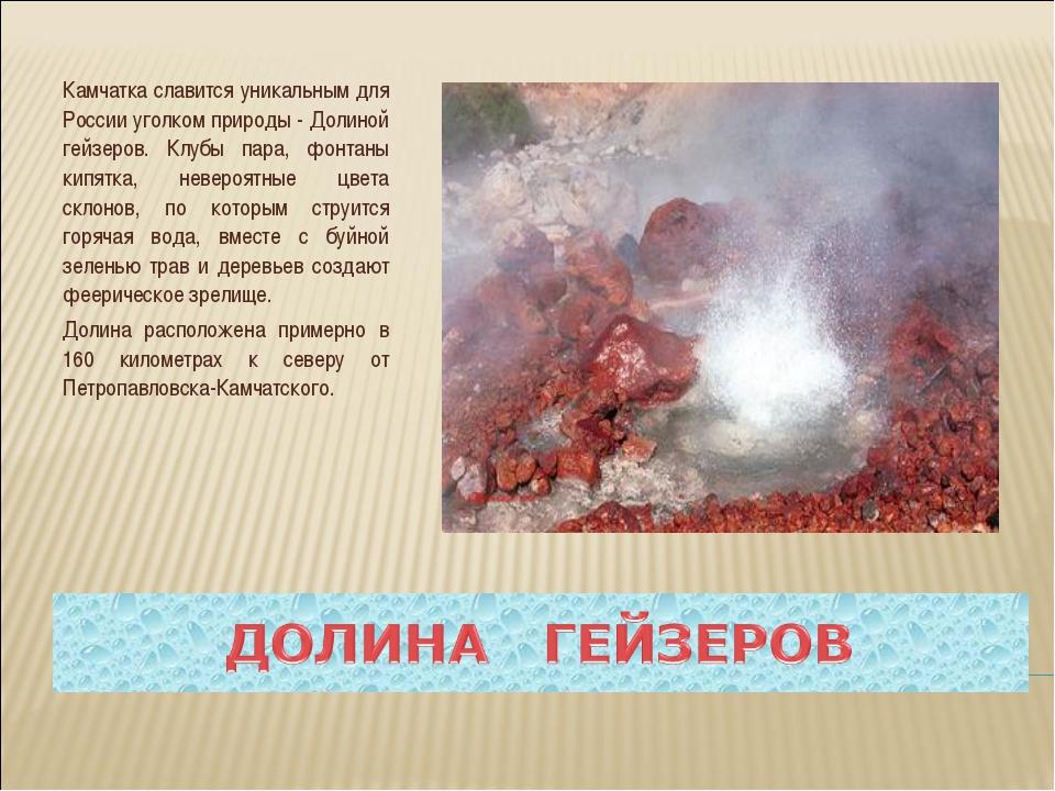 Камчатка славится уникальным для России уголком природы - Долиной гейзеров. К...