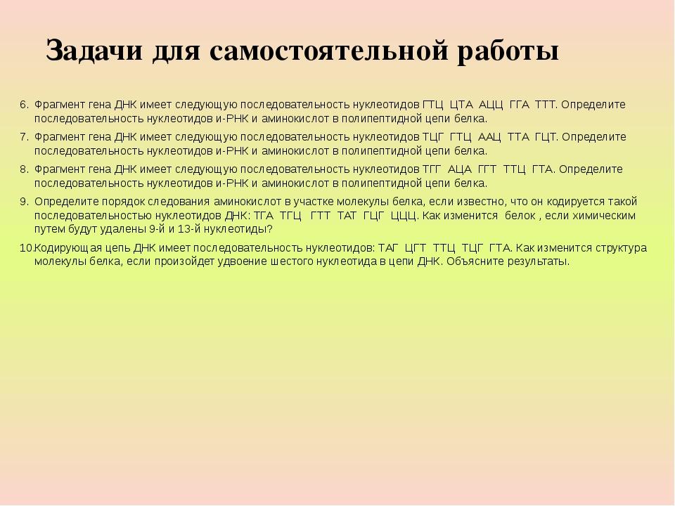 Фрагмент гена ДНК имеет следующую последовательность нуклеотидов ГТЦ ЦТА АЦ...