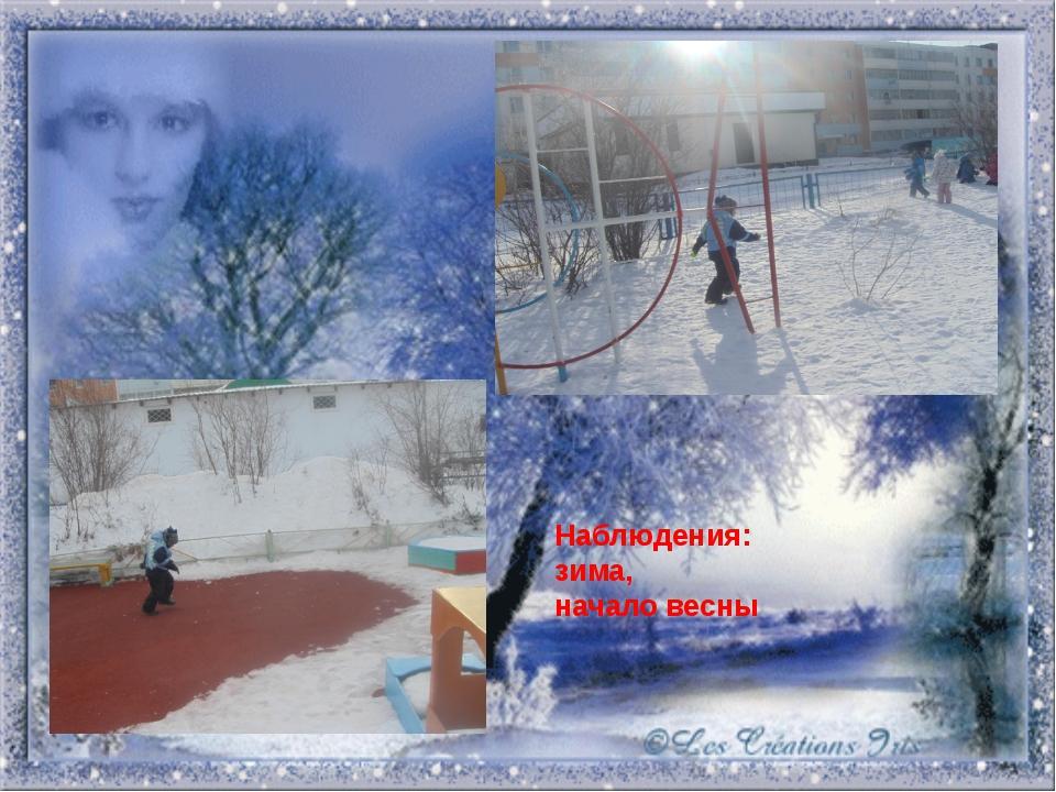Наблюдения: зима, начало весны