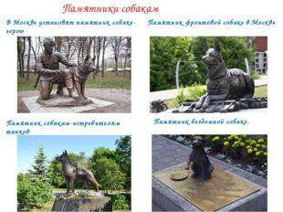 Памятники собакам В Москве установятпамятниксобаке-герою Памятникфронтов
