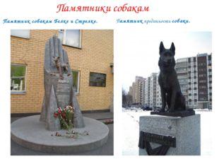 Памятники собакам Памятникпреданности собаки. Памятниксобакам Белке и Стре