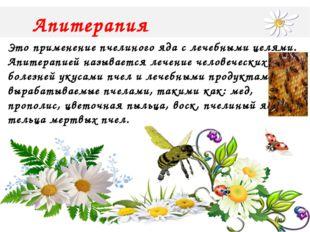 Апитерапия Это применение пчелиного яда с лечебными целями. Апитерапией назы