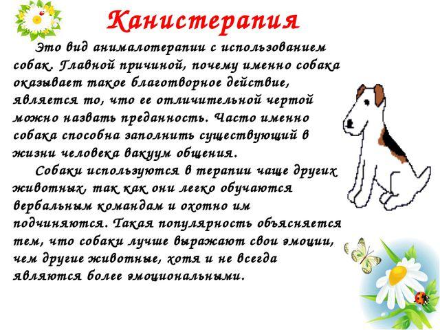Канистерапия Это вид анималотерапии с использованием собак. Главной причин...