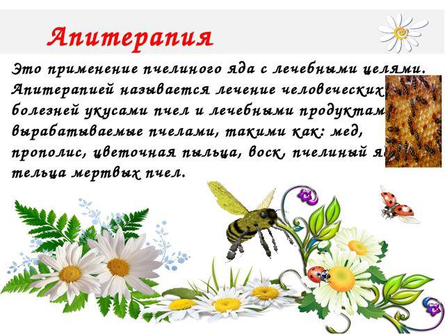 Апитерапия Это применение пчелиного яда с лечебными целями. Апитерапией назы...