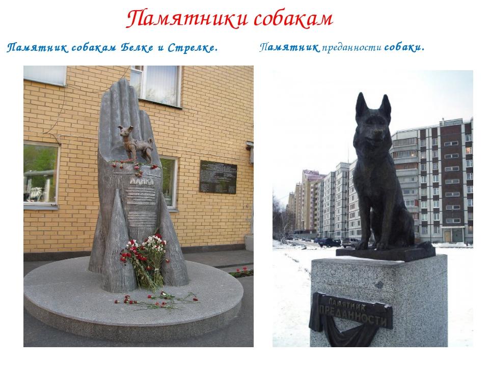 Памятники собакам Памятникпреданности собаки. Памятниксобакам Белке и Стре...