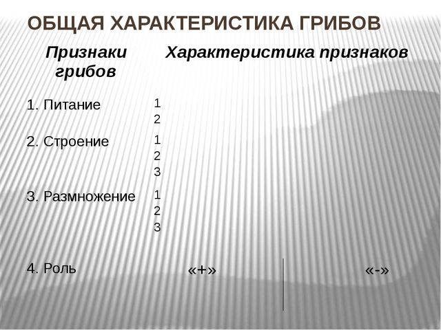 ОБЩАЯ ХАРАКТЕРИСТИКА ГРИБОВ Признаки грибов Характеристика признаков 1. Питан...
