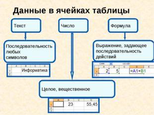 Данные в ячейках таблицы Число Последовательность любых символов Целое, вещес