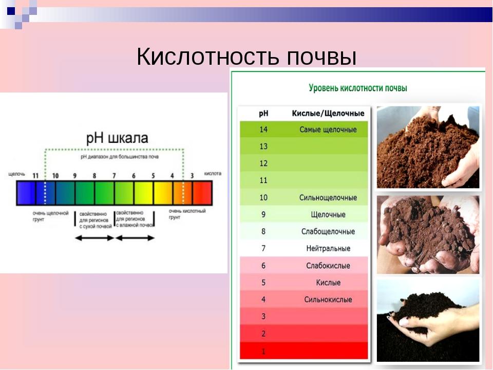 Новинка тестеры кислотности почвы и жесткости воды