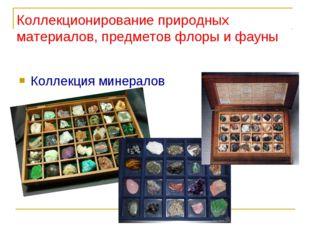 Коллекция минералов Коллекционирование природных материалов, предметов флоры