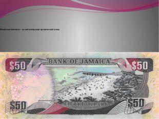 Ямайская банкнота – на ней изображен тропический пляж.