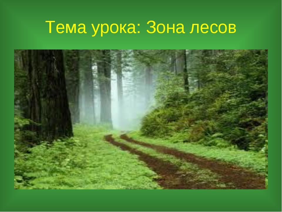 Тема урока: Зона лесов